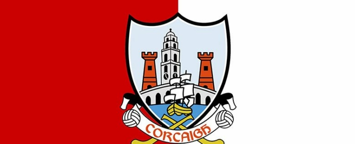 cork-flag-representing-the-medtech-and-pharmaceutical-industry-in-cork