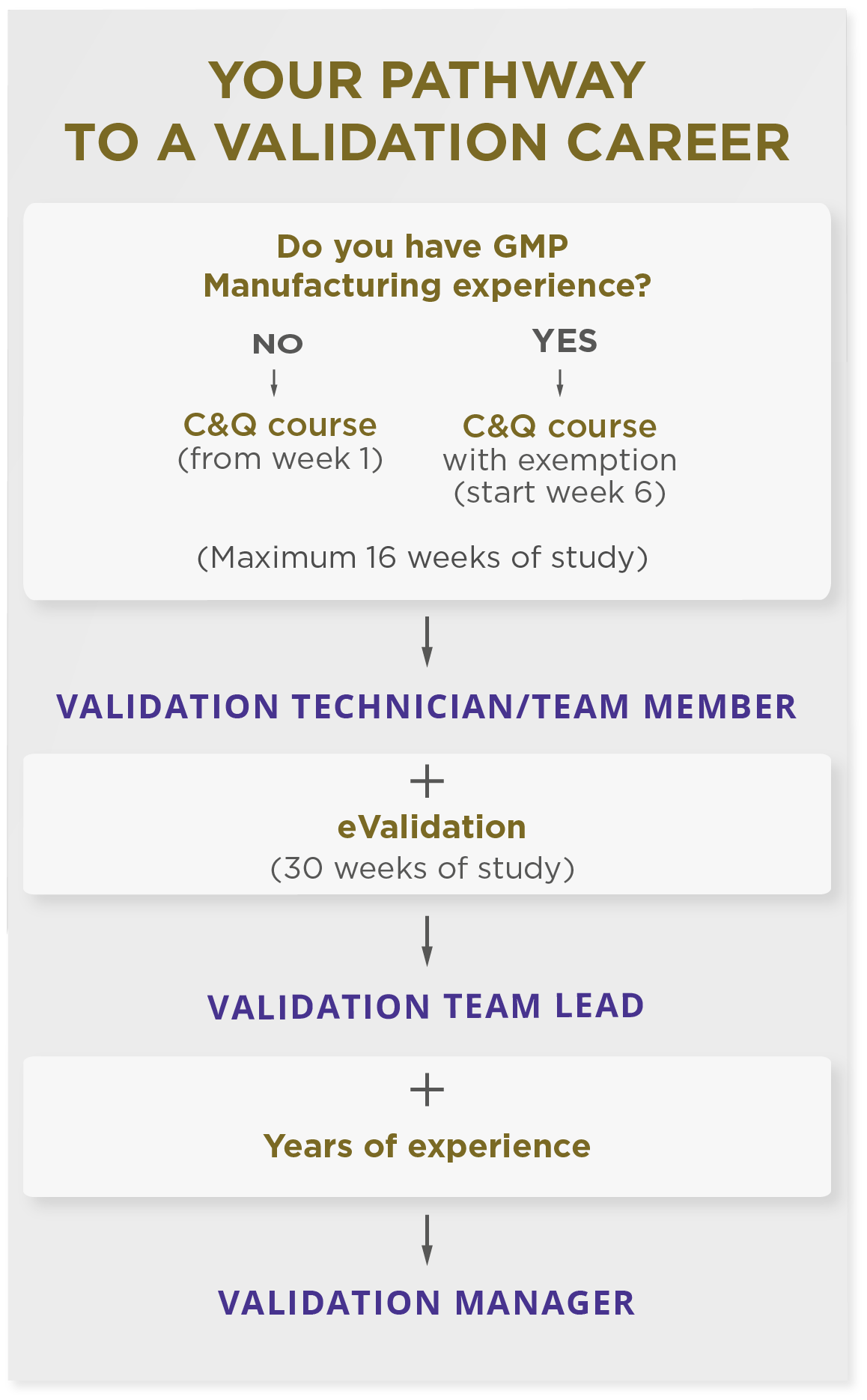 flow diagram showing pathway through a career in validation